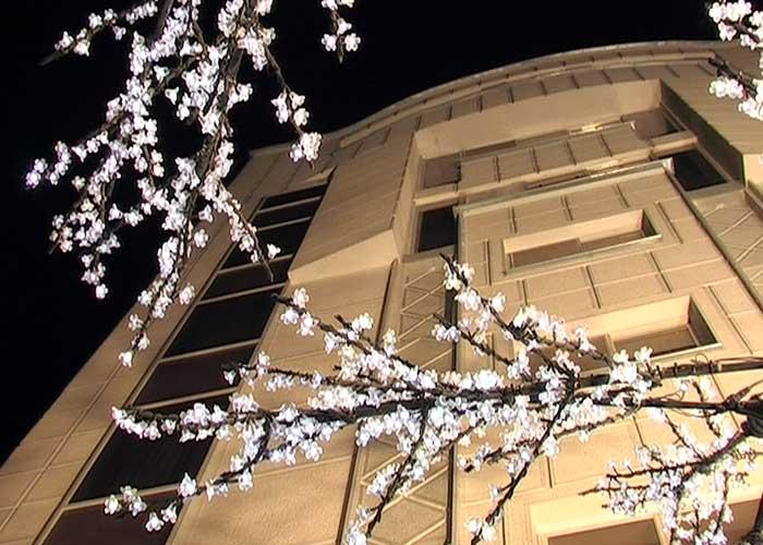 تصاویر ساختمان هتل ارم شیراز