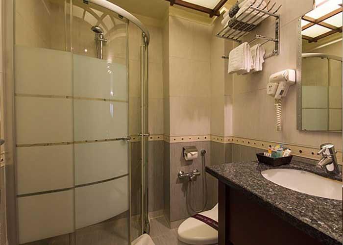 سرویس بهداشتی هتل اسکان تهران