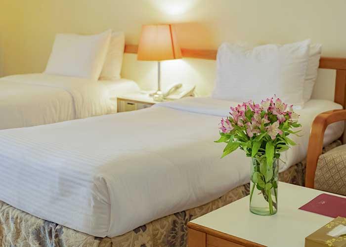 اتاق دو تخته توئین  هتل هما تهران