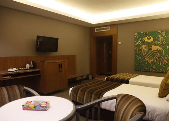 دو تخته vip هتل امیر تهران