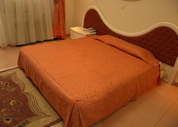 دو تخته هتل پارک شیراز