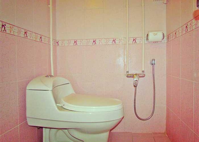 سرویس بهداشتی هتل پارس اصفهان