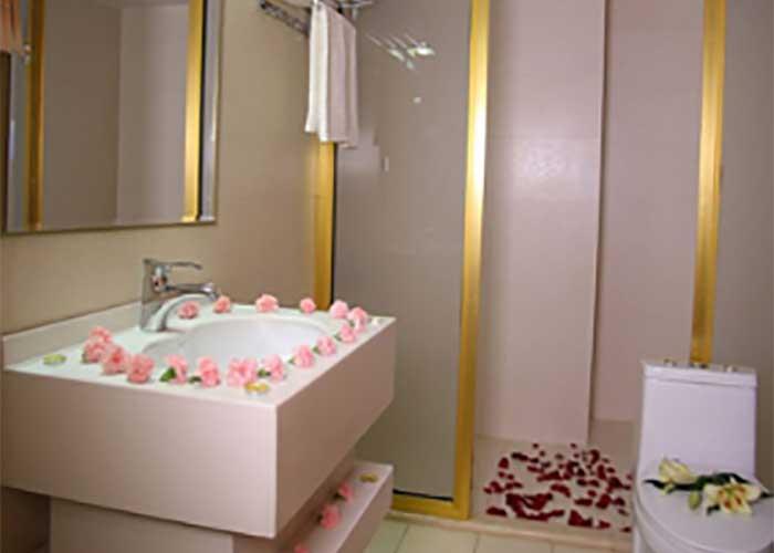سرویس بهداشتی هتل سارینا مشهد