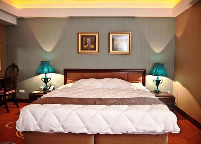 اتاق دو تخته هتل بزرگ شیراز