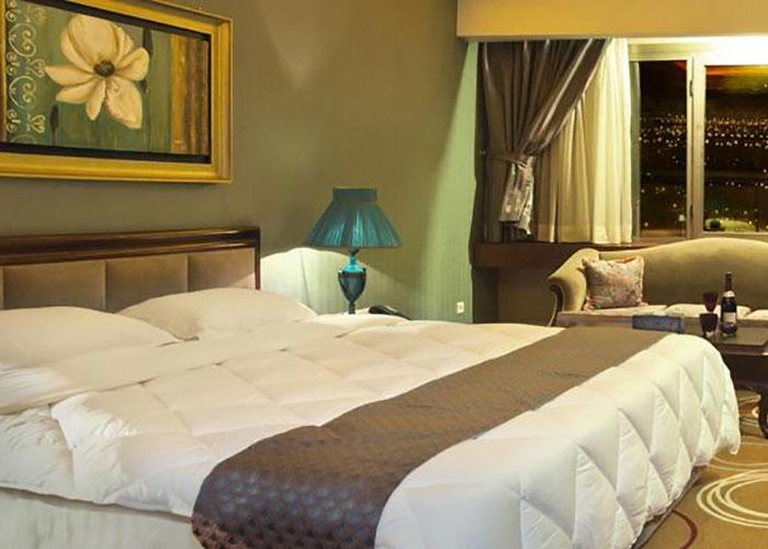 دبل تخته هتل بزرگ شیراز