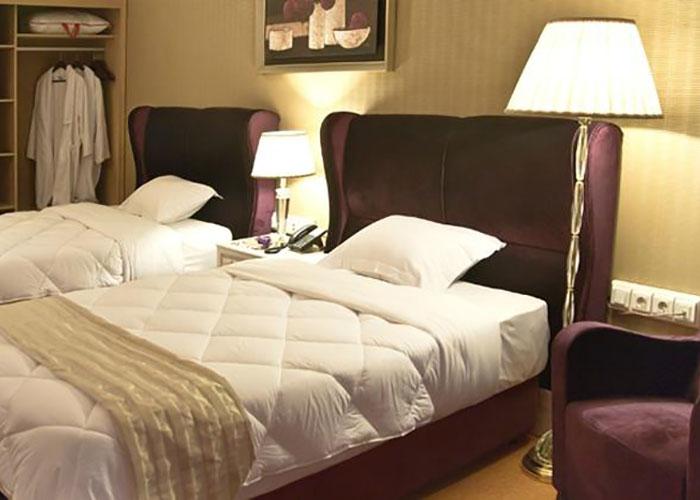 اتاق دو تخته توئین هتل بزرگ شیراز